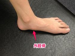 痛い の の 足 が 内側 骨